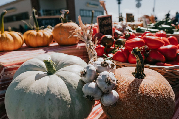 3 Things To Do at the Arcata Farmers Market