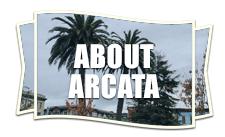 About Arcata