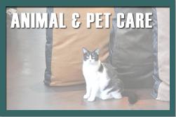 Animal & Pet Care